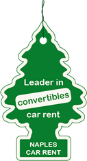 Leader in convertible car hire